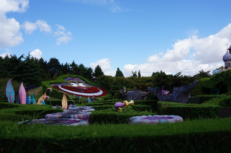 Alice's Curious Labyrinth overview