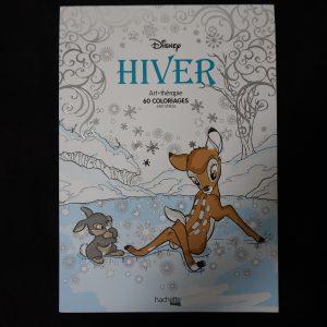 Disney kleuren voor volwassenen (Winter)