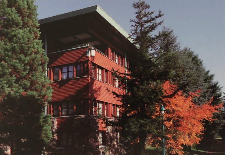 sequoia lodge bomen