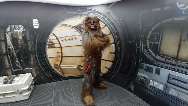 Chewbacca DLP