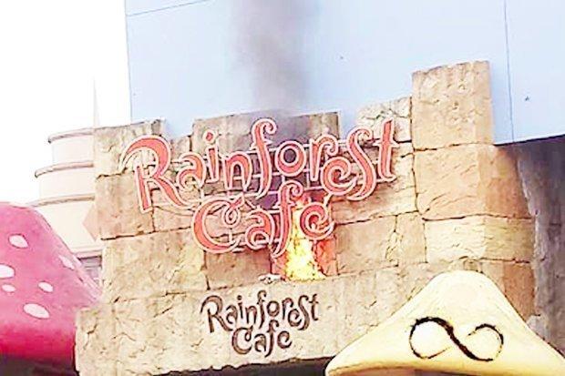 Brand Rainforest Cafe Disneyland Paris