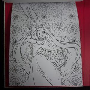 Disney kleuren voor volwassenen met fotolijst (Princess)