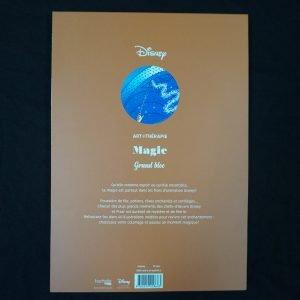 Disney kleuren voor volwassenen blok (Magie)